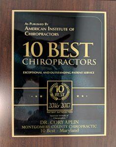 10 best chiropractors 2016 2017